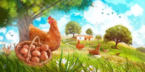 Happy_Chicken_Farm